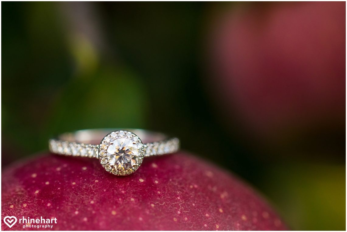 hotel-hershey-central-pa-best-engagement-wedding-photographers-creative-biglerville-apple-orchards-2