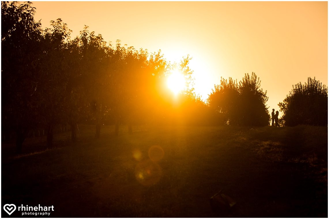 hotel-hershey-central-pa-best-engagement-wedding-photographers-creative-biglerville-apple-orchards-4
