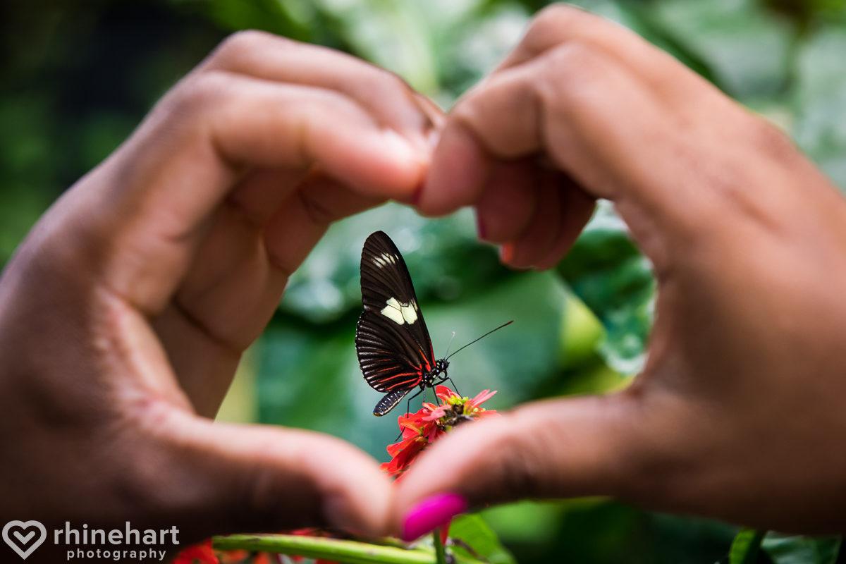hershey-wedding-photographers-best-creative-hotel-gardens-harrisburg-21