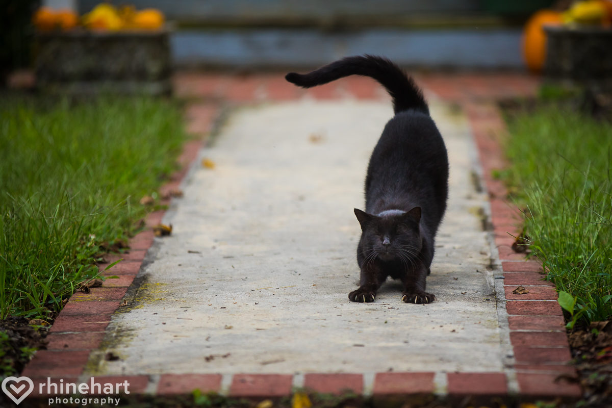 heritage-restored-wedding-photographers-best-shippensburg-newville-central-pa-creative-unique-25