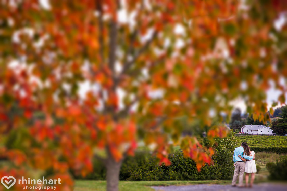 big-cork-best-frederick-md-wedding-photographers-3