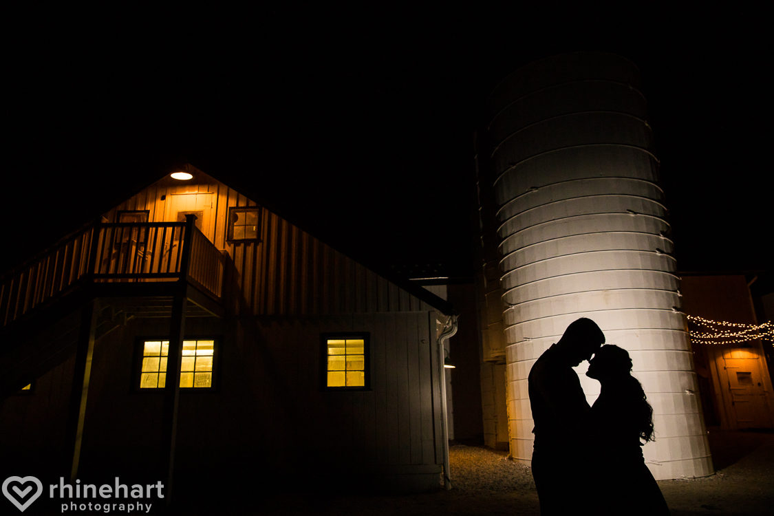 worsell-manor-wedding-photographers-creative-best-warwick-chesapeake-city-md-47-1