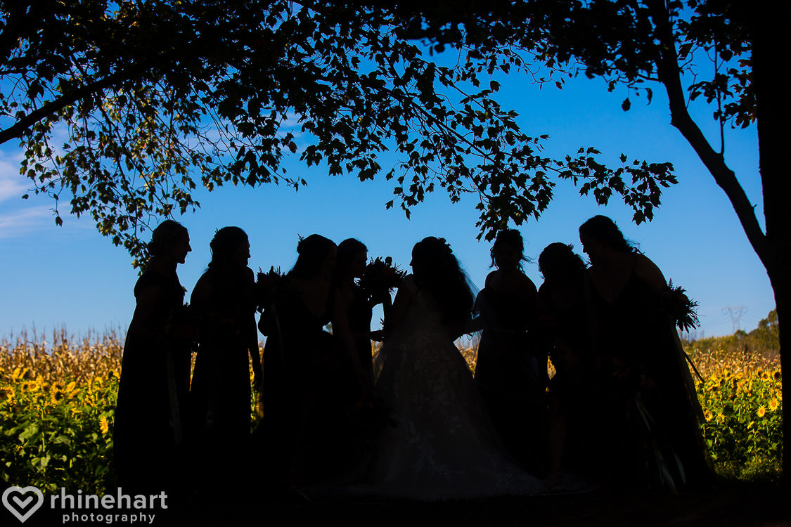 lehigh-valley-wedding-photographers-creative-best-14