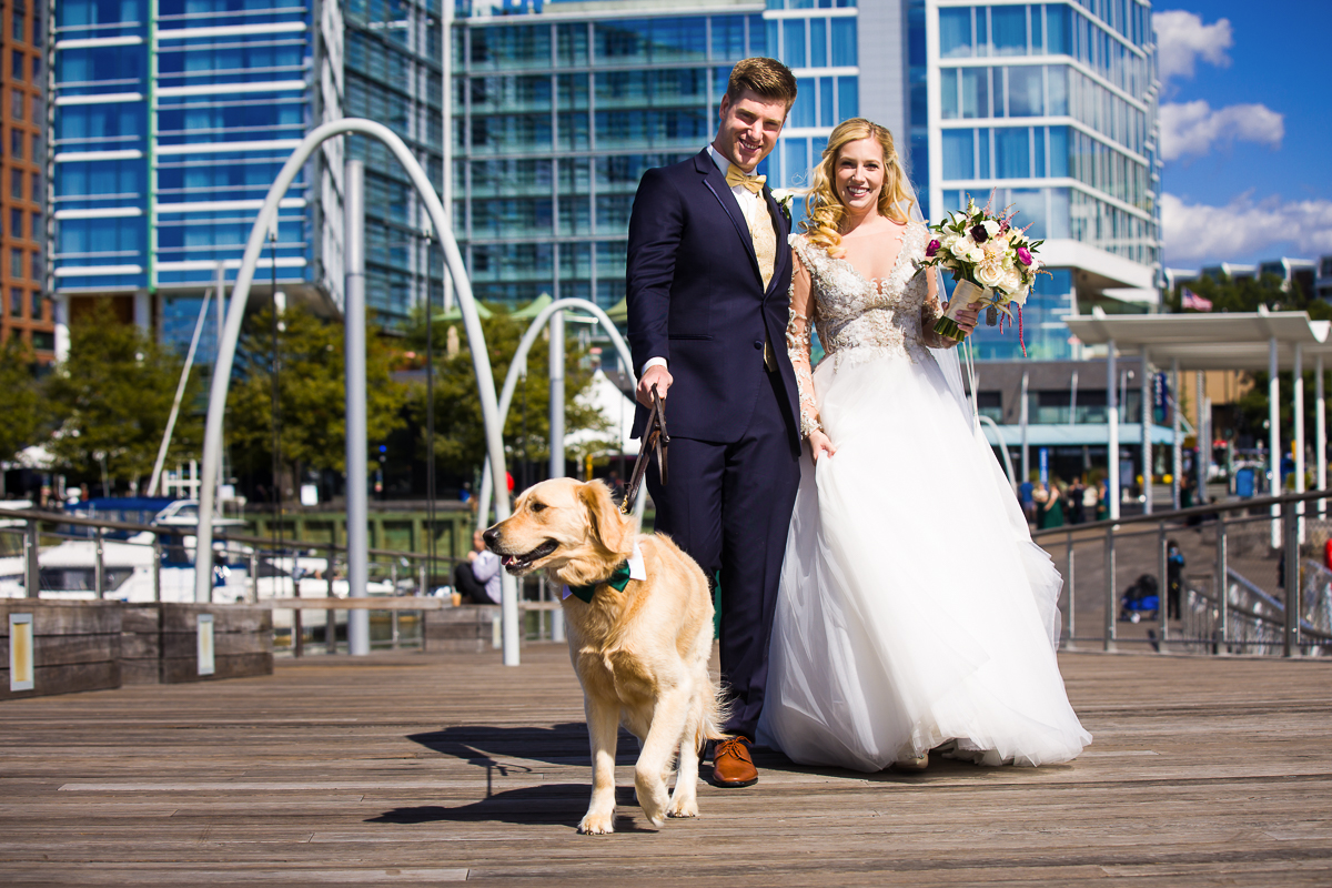 Bride and groom walk their golden lab in front of Canopy by hilton at the wharf in washington dc
