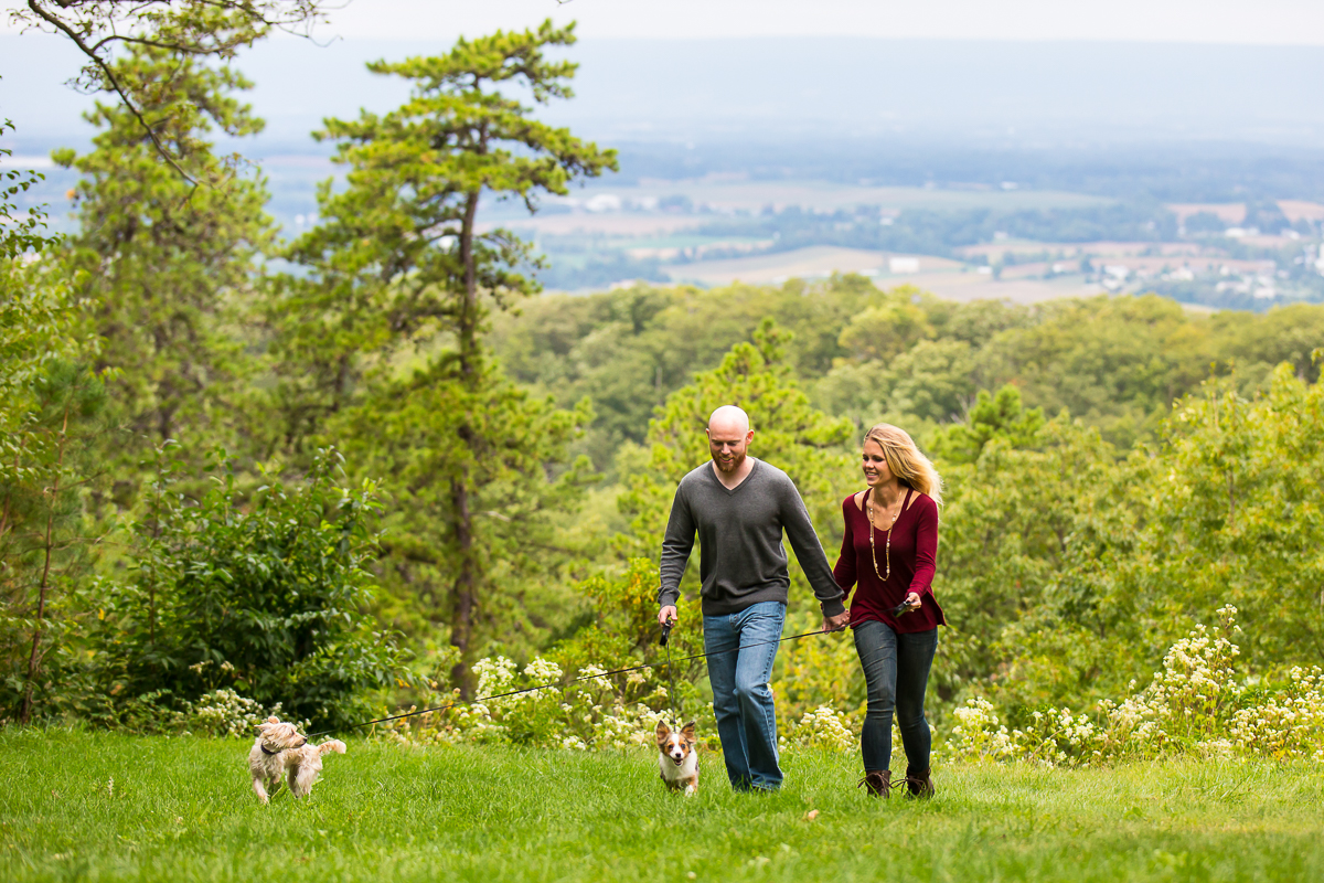 a couple walks two dogs during their family portrait session