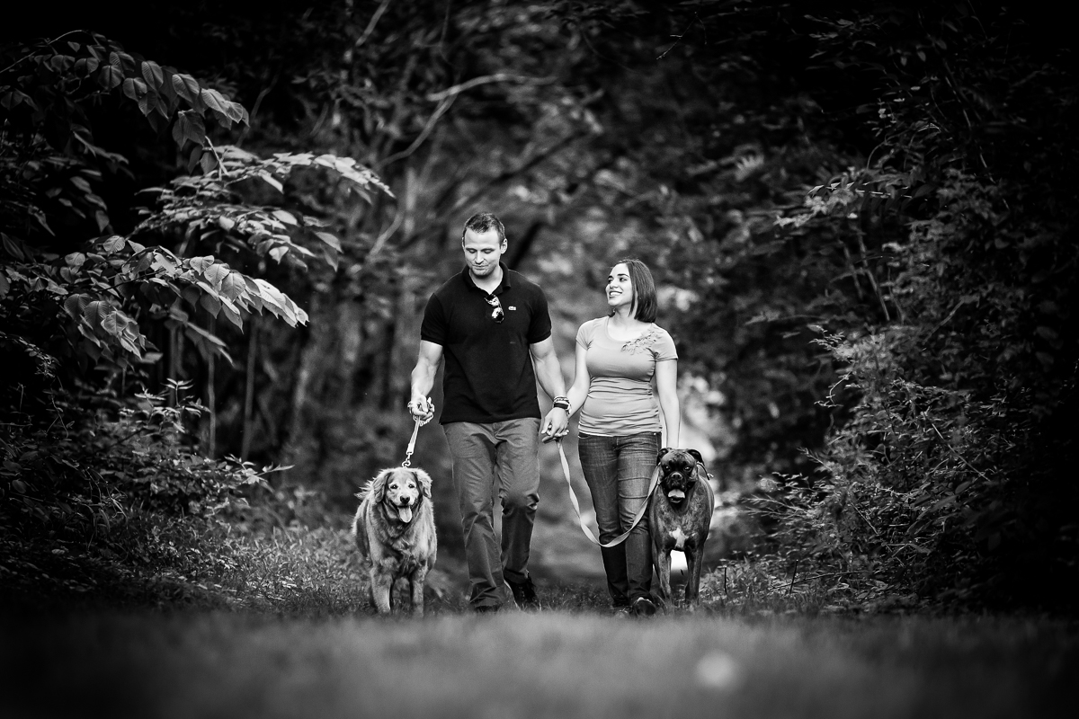 Shippensburg couple walking their dogs for a family photo session