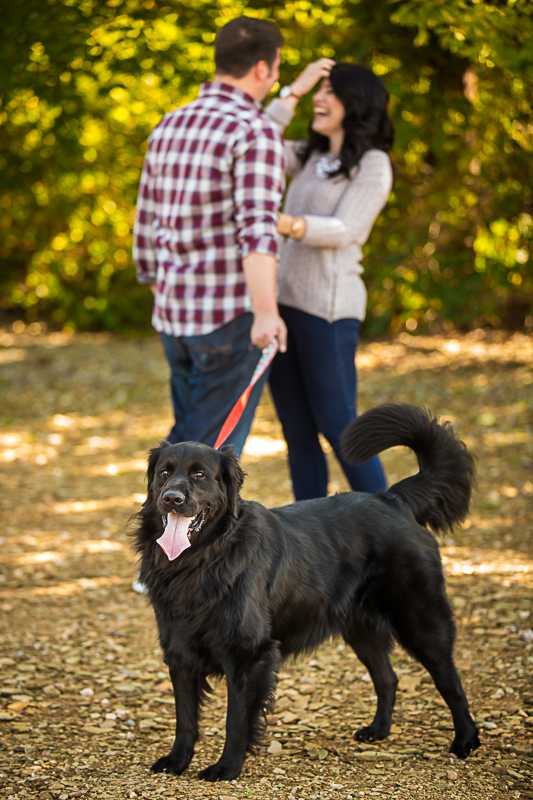 tips-for-great-family-portrait-photography-with-dogs-in-washington-dc-2