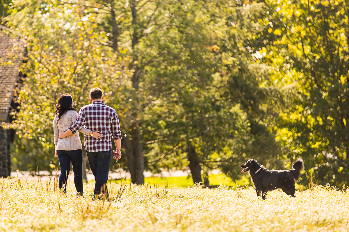 tips for natural dog family portrait photos in dc