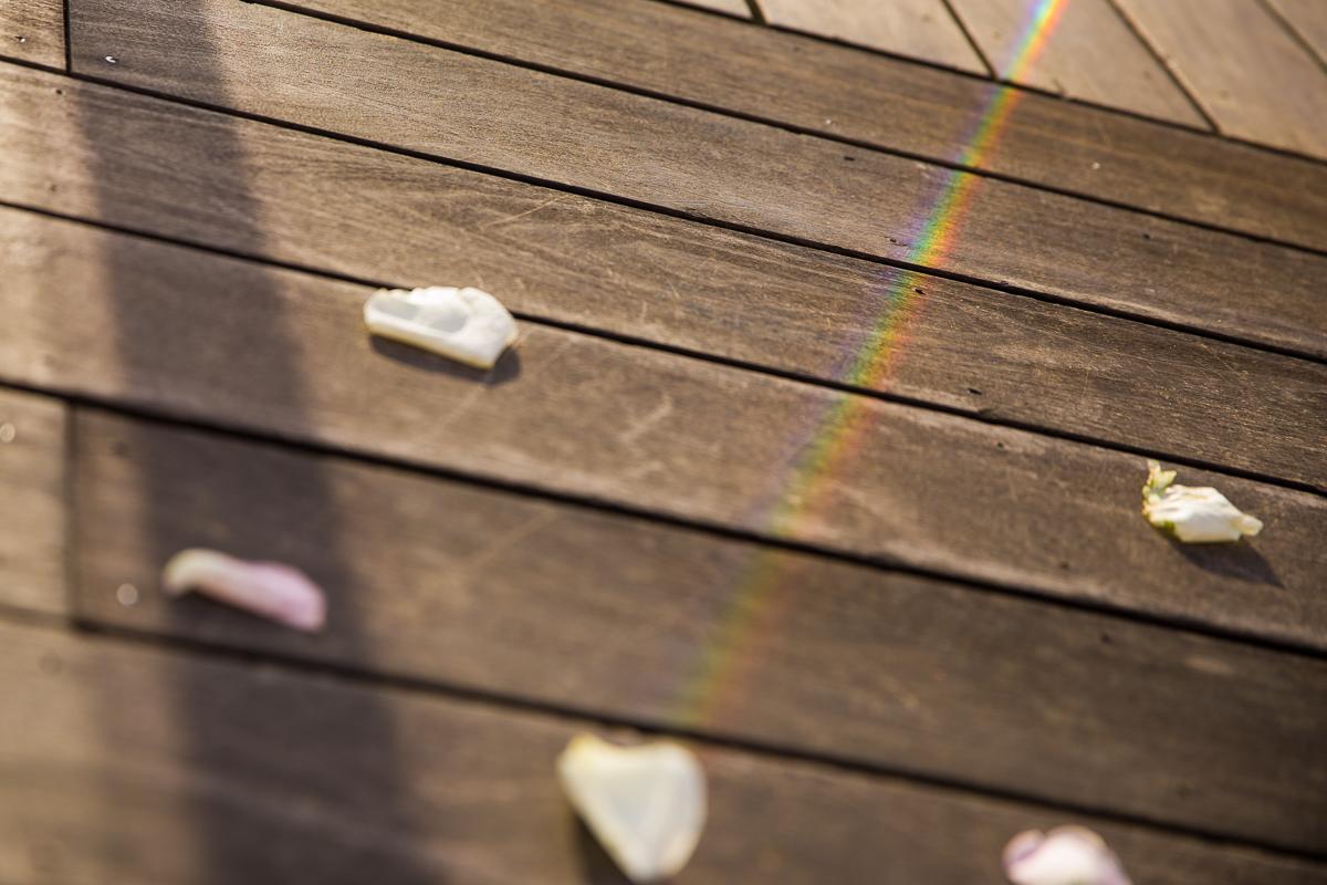 rainbow primism and flower petals same sex nj wedding photographers