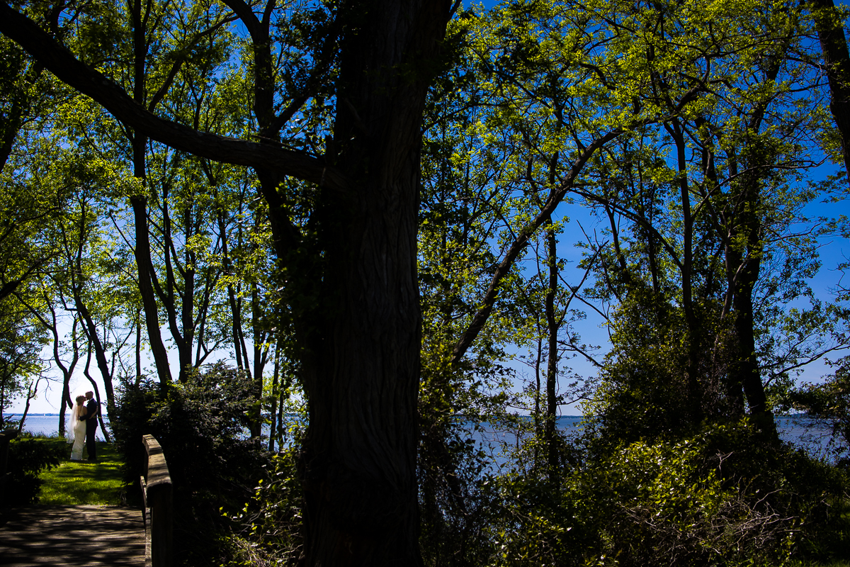 wide angle photograph of forests of trees lining Chesapeake bay at camp wright during first look