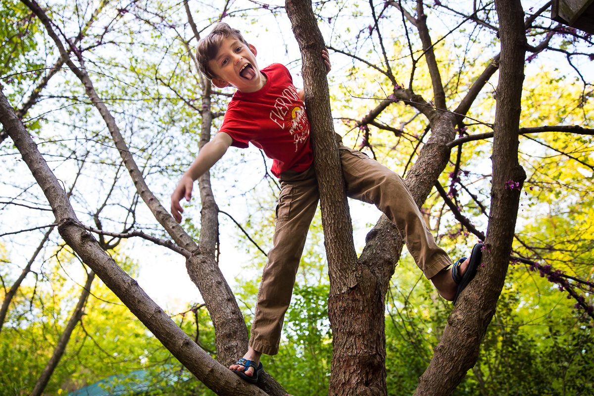 authentic lifestyle family photographer captures candid natural boy climbing a tree in pennsylvania homeschool creative best